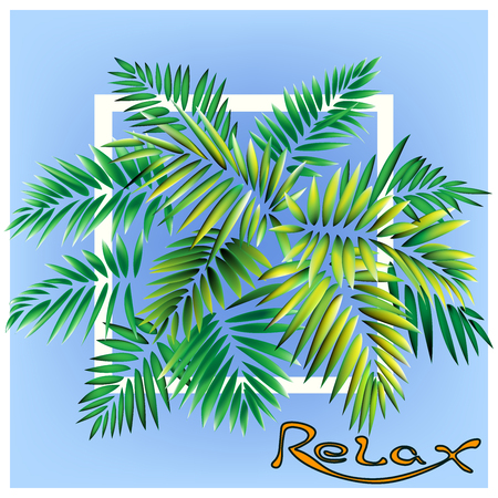 The cool Vector leaves tropics palm for relax. Vector consists of 4 layers.