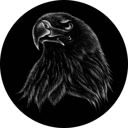 The eagle illustration for T-shirt design or outwear. Hunting style eagle background.