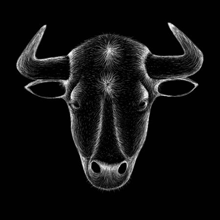 The Vector logo bull for T-shirt design or outwear. Hunting style bull background.