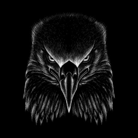 The Vector eagle for T-shirt design or outwear. Hunting style eagle background. Çizim