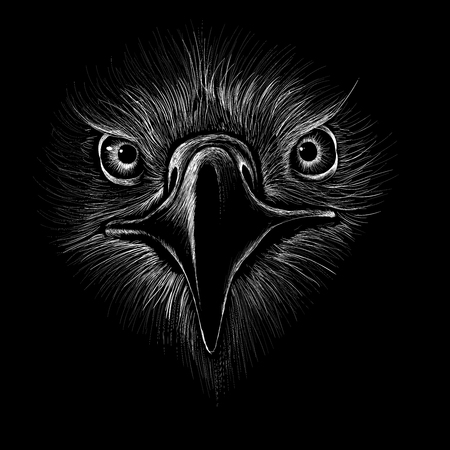 The Vector eagle for T-shirt design or outwear. Hunting style eagle background. Stock Illustratie