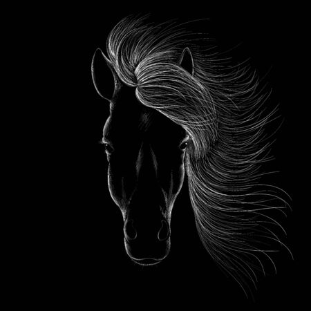 The Vector logo horse for T-shirt print design or outwear. Hunting style horse background. This drawing would be nice to make on the black fabric or canvas. Illustration