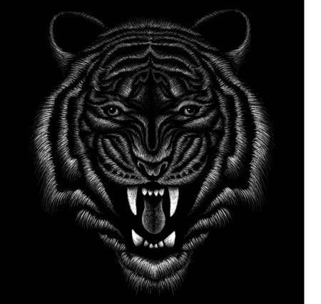 The Vector tiger for tattoo or T-shirt design or outwear.  Hunting style tigers print on black background Illustration
