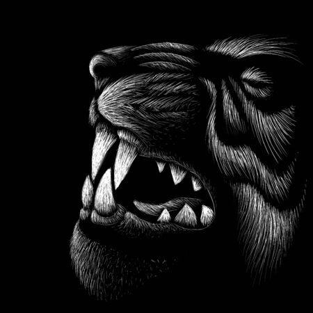 The Vector tiger for tattoo or T-shirt design or outwear.  Hunting style tigers print on black background. This drawing is for black fabric or canvas. Иллюстрация