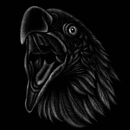 The Vector eagle for tattoo or T-shirt design or outwear.  Hunting style eagle background. Ilustrace
