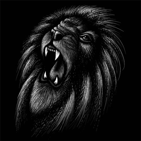 The Vector lion for tattoo or T-shirt print design or outwear.  Hunting style lions background. This drawing would be nice to make on the black fabric or canvas