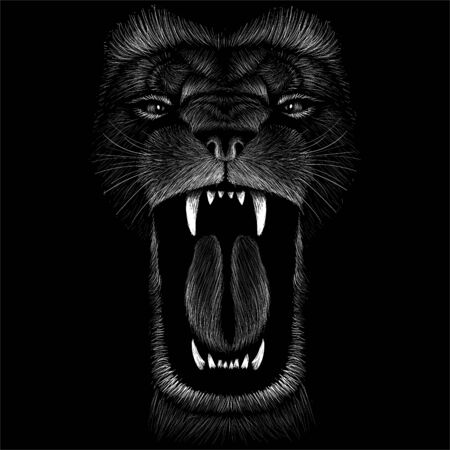 The Vector lion for tattoo or T-shirt print design or outwear. Hunting style lions background. This drawing would be nice to make on the black fabric or canvas Vektorové ilustrace