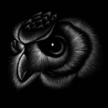 The Vector owl for tattoo or T-shirt design or outwear.  Hunting style owl background. This drawing would be nice to make on the black fabric or canvas.