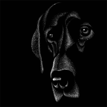 dog for tattoo or T-shirt design or outwear. Cute print style dog or puppy background. This drawing would be nice to make on the black fabric or canvas