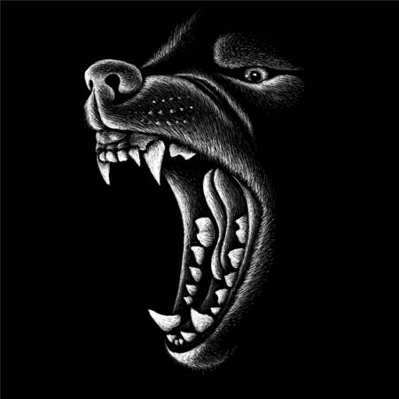 dog  or wolf for tattoo or T-shirt design or outwear.  Cute print style dog  or wolf  background. This drawing would be nice to make on the black fabric or canvas Illustration