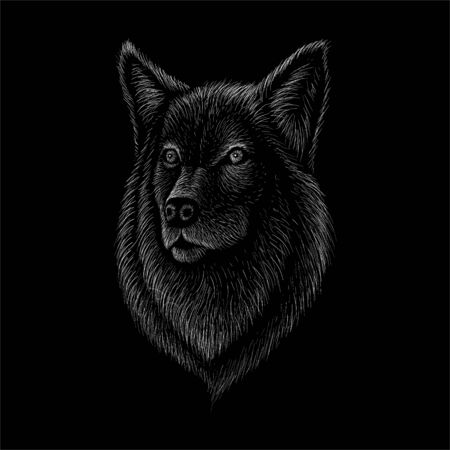 dog or wolf for tattoo or T-shirt design or outwear. Cute print style dog or wolf background. This drawing would be nice to make on the black fabric or canvas. Illustration