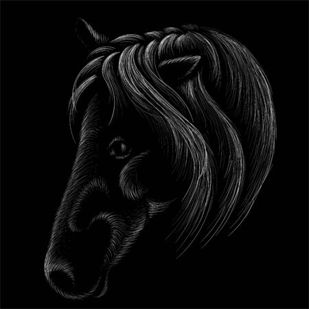 The Vector horse for T-shirt print  design or outwear. Hunting style horse background.