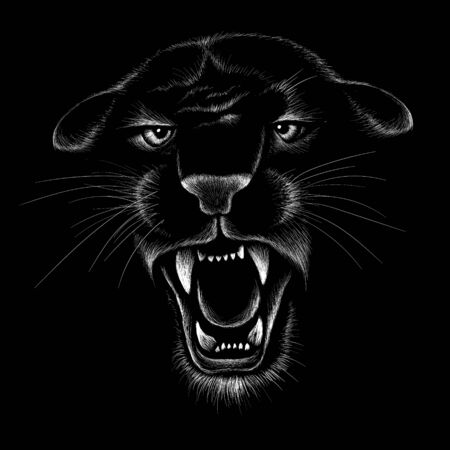 The Vector animal for tattoo or T-shirt  print design or outwear. Hunting style angry animal head background Banque d'images - 138365366
