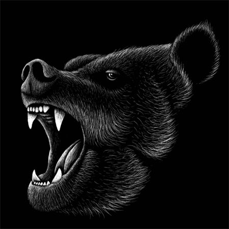 The Vector bear for T-shirt design or outwear print. Hunting style bear background.