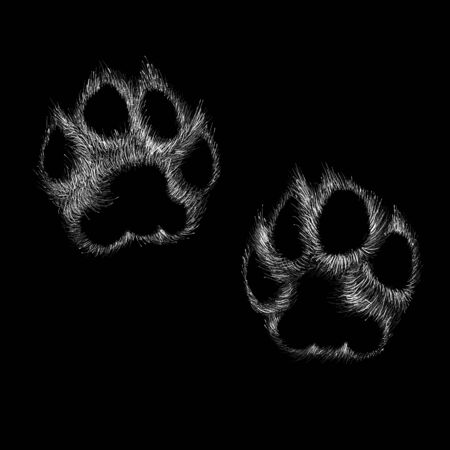 The Vector paw for T-shirt design or outwear. This is print for black canvas