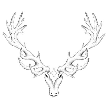 The Vector deer for tattoo or T-shirt design or outwear. Cute print style deer background for canvas