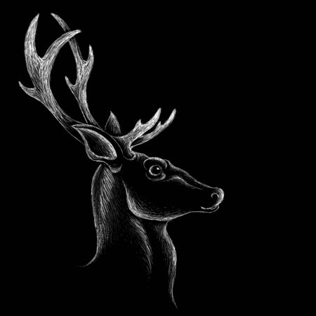 The logo deer for T-shirt print design or outwear. Hunting style deer background. This drawing would be nice to make on the black fabric or canvas Foto de archivo