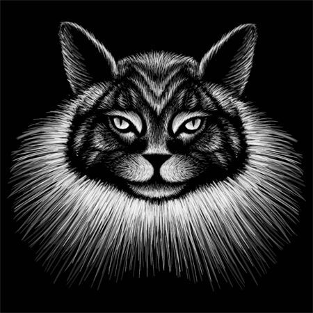 The Vector logo queen of cats for tattoo or T-shirt design or outwear. Cute crown print style cat of background. Foto de archivo - 145791533