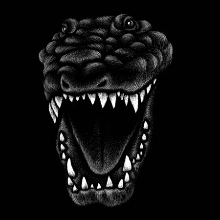 dragon or dinosaur  for T-shirt print  design or outwear.  Hunting style reptile background. 向量圖像