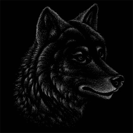 The Vector logo dog  or wolf for tattoo or T-shirt design or outwear.  Cute print style dog  or wolf  background. This drawing would be nice to make on the black fabric or canvas