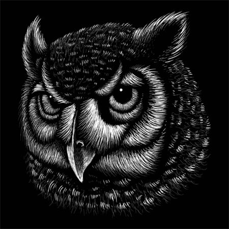 The Vector logo owl for tattoo or T-shirt design or outwear. Hunting style owl background. This drawing would be nice to make on the black fabric or canvas Logo