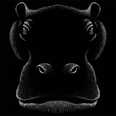The Vector logo African hippofor tattoo or T-shirt design or outwear.  Cute print style African hippo background. This drawing would be nice to make on the black fabric or canvas