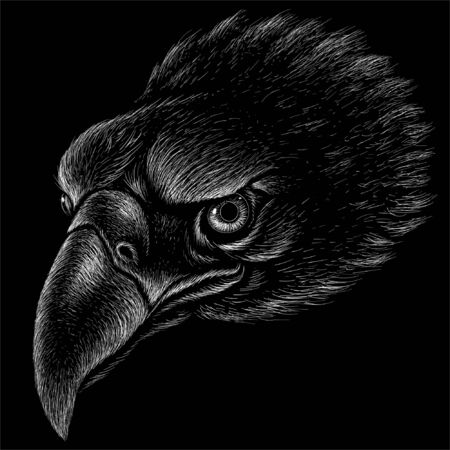 The Vector eagle for tattoo or T-shirt design or outwear.  Hunting style eagle background. This hand drawing is for black fabric or canvas Vectores