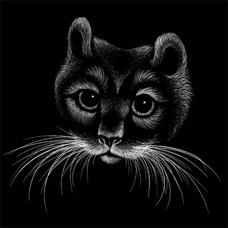 The Vector logo cat for tattoo or T-shirt design or outwear.  Cute print style cat background. This hand drawing would be nice to make on the black fabric or canvas Illustration