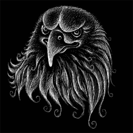The Vector logo eagle for tattoo or T-shirt design or outwear.  Hunting style eagle background. This drawing is for black fabric or canvas