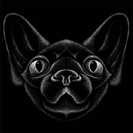 The Vector logo cat for tattoo or T-shirt design or outwear.  Cute print style cat background. This hand drawing would be nice to make on the black fabric or canvas Vectores