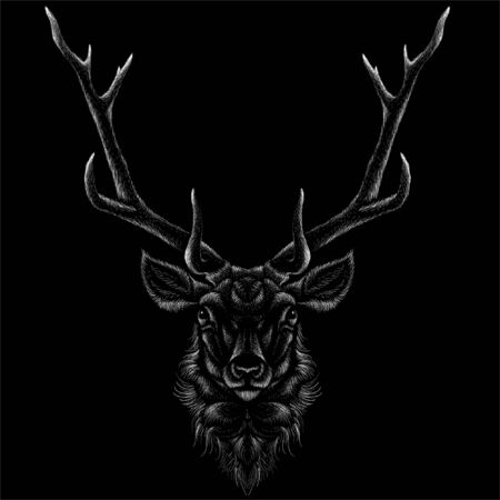 The Vector logo deer for T-shirt print  design or outwear.  Hunting style deer background. This drawing would be nice to make on the black fabric or canvas. Illustration