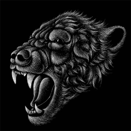 The Vector logo bear for T-shirt design or outwear.  Hunting style bear background. This drawing would be nice to make on the black fabric or canvas