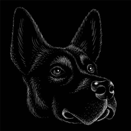 The Vector logo dog  or wolf for tattoo or T-shirt design or outwear.  Cute print style dog  or wolf  background. This hand drawing would be nice to make on the black fabric or canvas