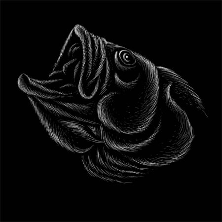The Vector  fish on black cloth for T-shirt print  design or outwear.  Fishing style grouper  background. This drawing would be nice to make on the black fabric or canvas  イラスト・ベクター素材