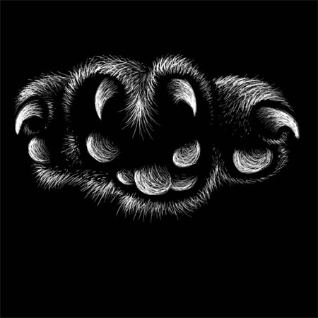 The Vector  paw with claws for T-shirt design or outwear. This drawing would be nice to make on the black fabric or canvas