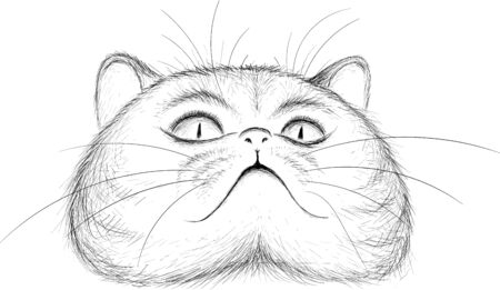 The Vector  cat for tattoo or T-shirt design or outwear.  Cute print style cat background. This hand drawing would be nice to make on the black fabric or canvas Vectores