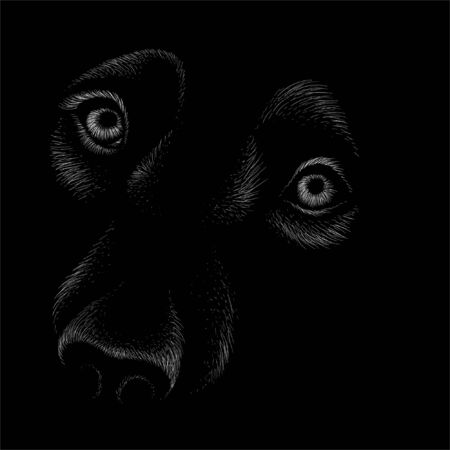 The Vector  dog  or wolf for tattoo or T-shirt design or outwear.  Cute print style dog  or wolf  background. This hand drawing would be nice to make on the black fabric or canvas