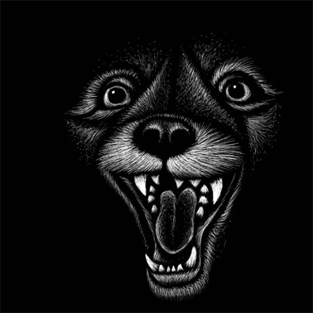 The Vector  animals howling for tattoo or T-shirt design or outwear.  Cute print style animals howling background. This hand drawing would be nice to make on the black fabric or canvas Foto de archivo - 145571100