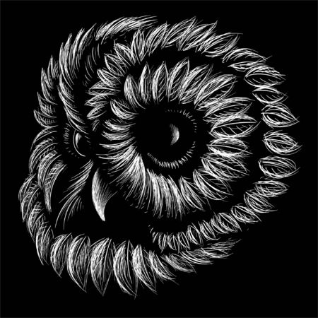 The Vector  owl for tattoo or T-shirt design or outwear.  Hunting style owl background. This hand drawing would be nice to make on the black fabric or canvas Vectores