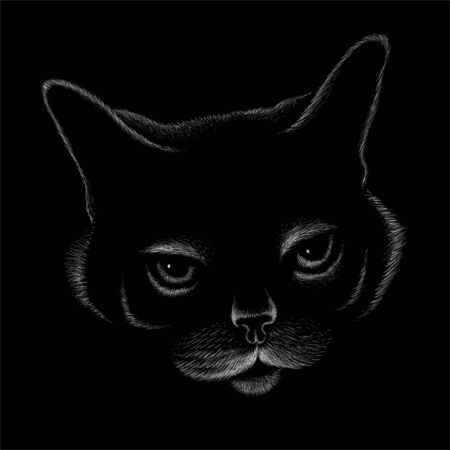 The Vector logo cat for tattoo or T-shirt design or outwear. Cute print style cat background. This hand drawing would be nice to make on the black fabric or canvas Logo