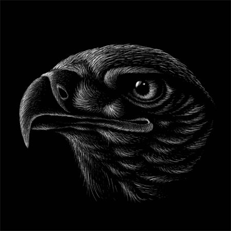 eagle for tattoo or T-shirt design or outwear.  Hunting style eagle background. This hand drawing is for black fabric or canvas Foto de archivo - 146261344