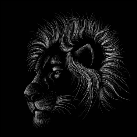 lion for tattoo or T-shirt print design or outwear.  Hunting style lions background. This hand drawing would be nice to make on the black fabric or canvas Foto de archivo - 146261346