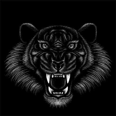 tiger for tattoo or T-shirt design or outwear.  Hunting style big cat print on black background. This hand drawing is for black fabric or canvas Foto de archivo - 146261351