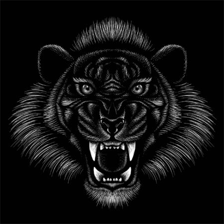 tiger for tattoo or T-shirt design or outwear.  Hunting style big cat print on black background. This hand drawing is for black fabric or canvas