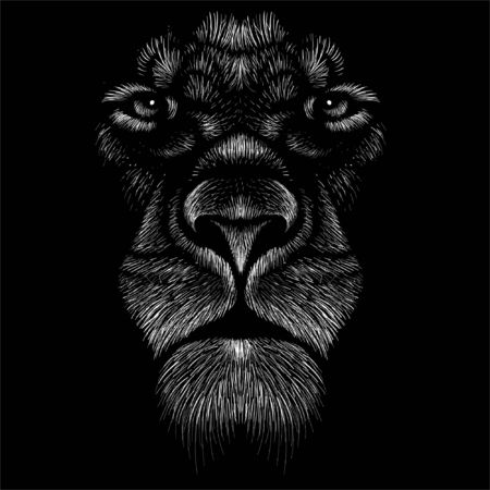 lion for tattoo or T-shirt print design or outwear.  Hunting style lions background. This hand drawing would be nice to make on the black fabric or canvas.