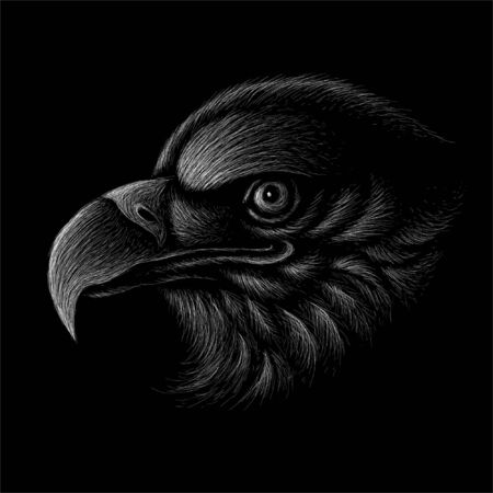 The Vector eagle for tattoo or T-shirt design or outwear. Hunting style eagle background. This hand drawing is for black fabric or canvas.