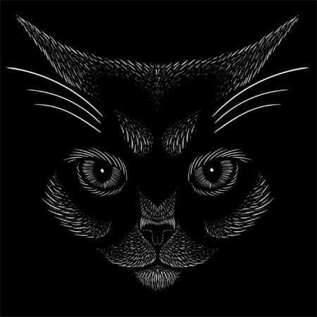 Cat vector art illustration T-shirt apparel tattoo design or outwear. Cute print style kitten background. This hand drawing would be nice to make on the black fabric or canvas Foto de archivo - 147264110