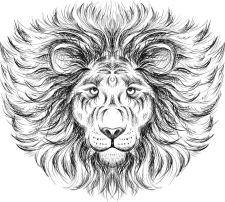 The Vector lion for tattoo or T-shirt print design or outwear. Hunting style lions background. This hand drawing would be nice to make on the black fabric or canvas.