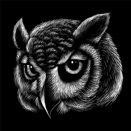 Owl for tattoo or T-shirt design or outwear. Hunting style owl background. Foto de archivo - 151396359