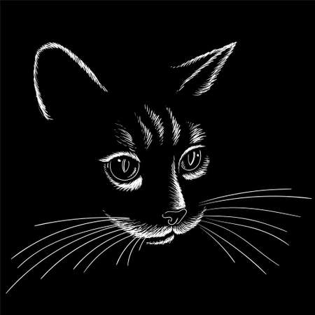 The Vector logo cat for tattoo or T-shirt design or outwear. Cute print style cat background. This hand drawing would be nice to make on the black fabric or canvas Foto de archivo - 151867884